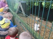 Our trip to Barrontop Farm